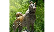 balto the dog