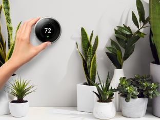 Thermostat with plants 2019