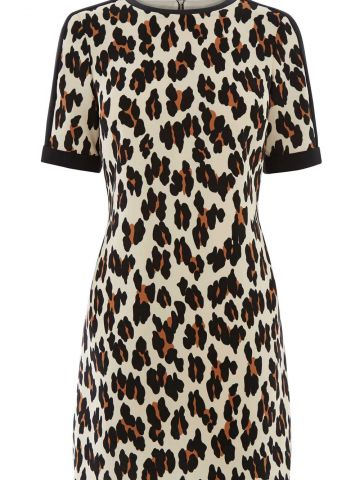 Oasis_LULU-LEOPARD-SHIFT-DRESS_$97_web.jpg