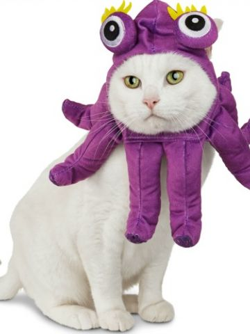 halloween costume_octopus.jpg