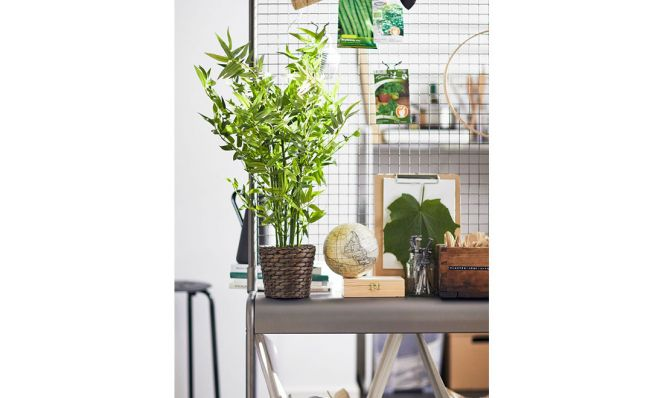 use a room divider to hang and organize